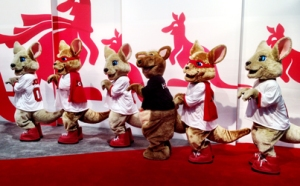 01-09-2014 - kangaroo chorus line